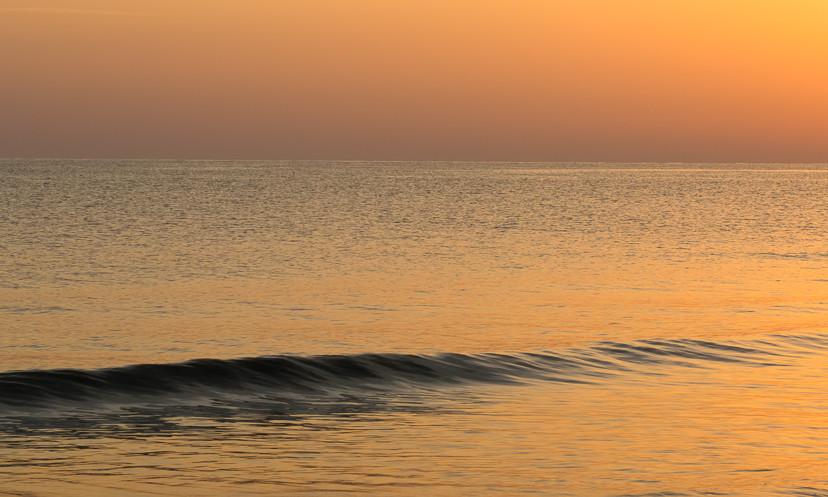 Wave at dawn